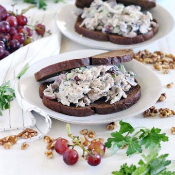 A white plate with a chicken salad with grapes sandwich on pumpernickel bread.
