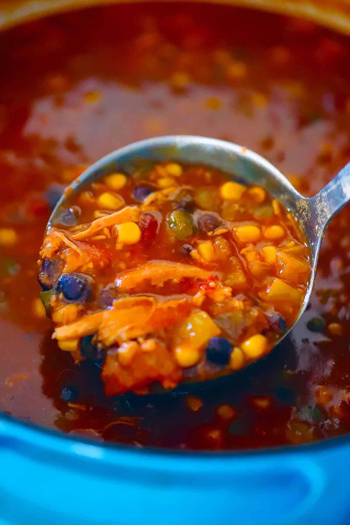 Close up ladle full of tortilla soup.