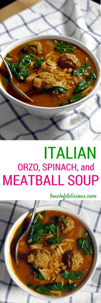 Italian Spinach Orzo and Meatball Soup
