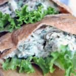 pinterest image for tzatziki chicken salad