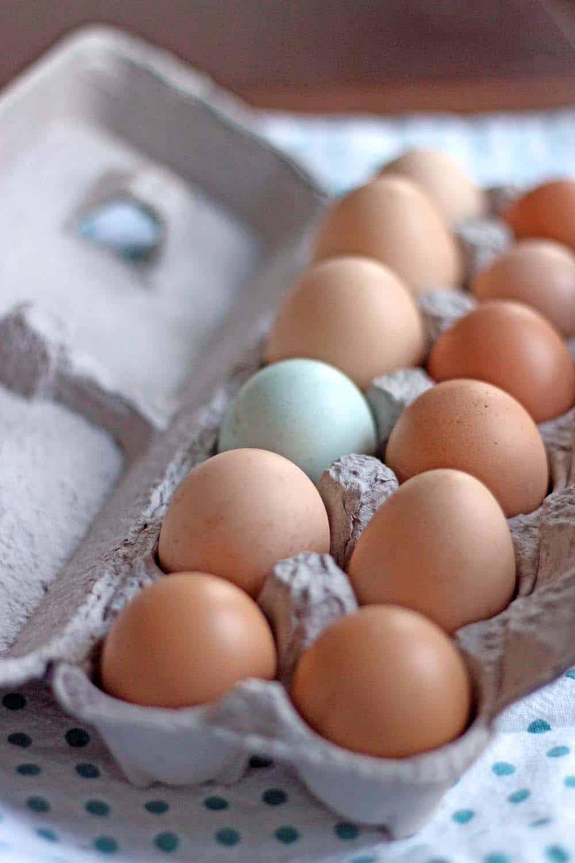 A dozen eggs in a cardboard egg holder.