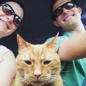Oscar on a road trip
