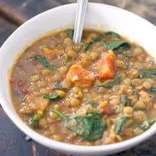 Healthy, hearty, delicious, and inexpensive- this vegan stew is packed with fiber and nutrients!