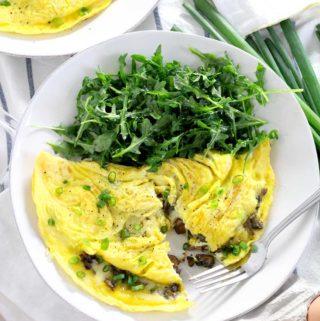 These Mushroom and Cheddar Omelettes are the perfect low-carb, healthy, fast meal to make any time of the day! This vegetarian recipe takes only ten minutes to throw together.