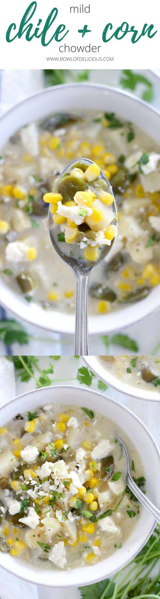 This mild green chile and corn chowder is thick and creamy, packed with sweet corn and mild fire-roasted green chiles. It's a gluten-free, vegetarian, hearty soup perfect for the end of summer! #cornchowder #soup #vegetarian #glutenfree