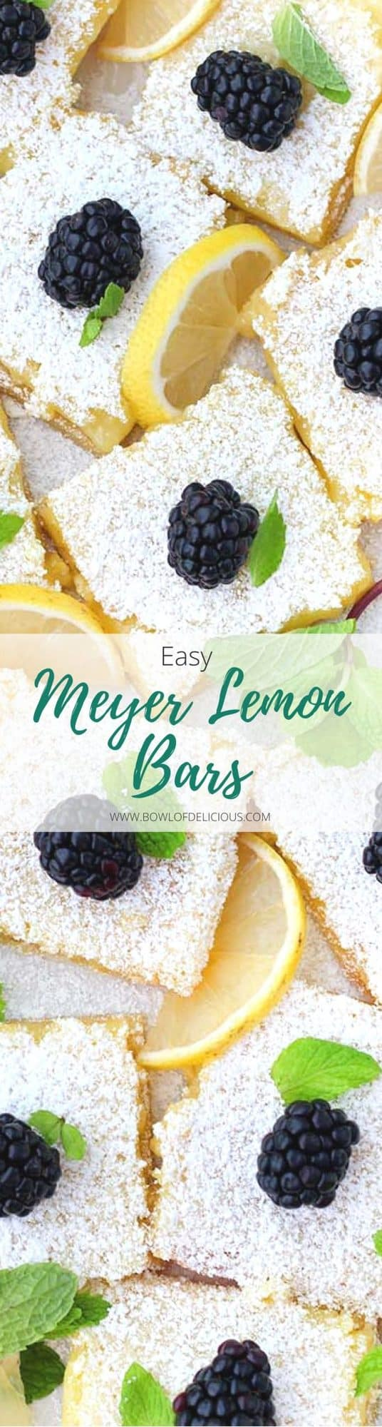 These easy Meyer lemon bars are the perfect balance of sweet and tart! The recipe uses whole eggs, and only one pot and bowl... it's a cinch to make. #LemonBars #MeyerLemons #Baking #EasyDesserts