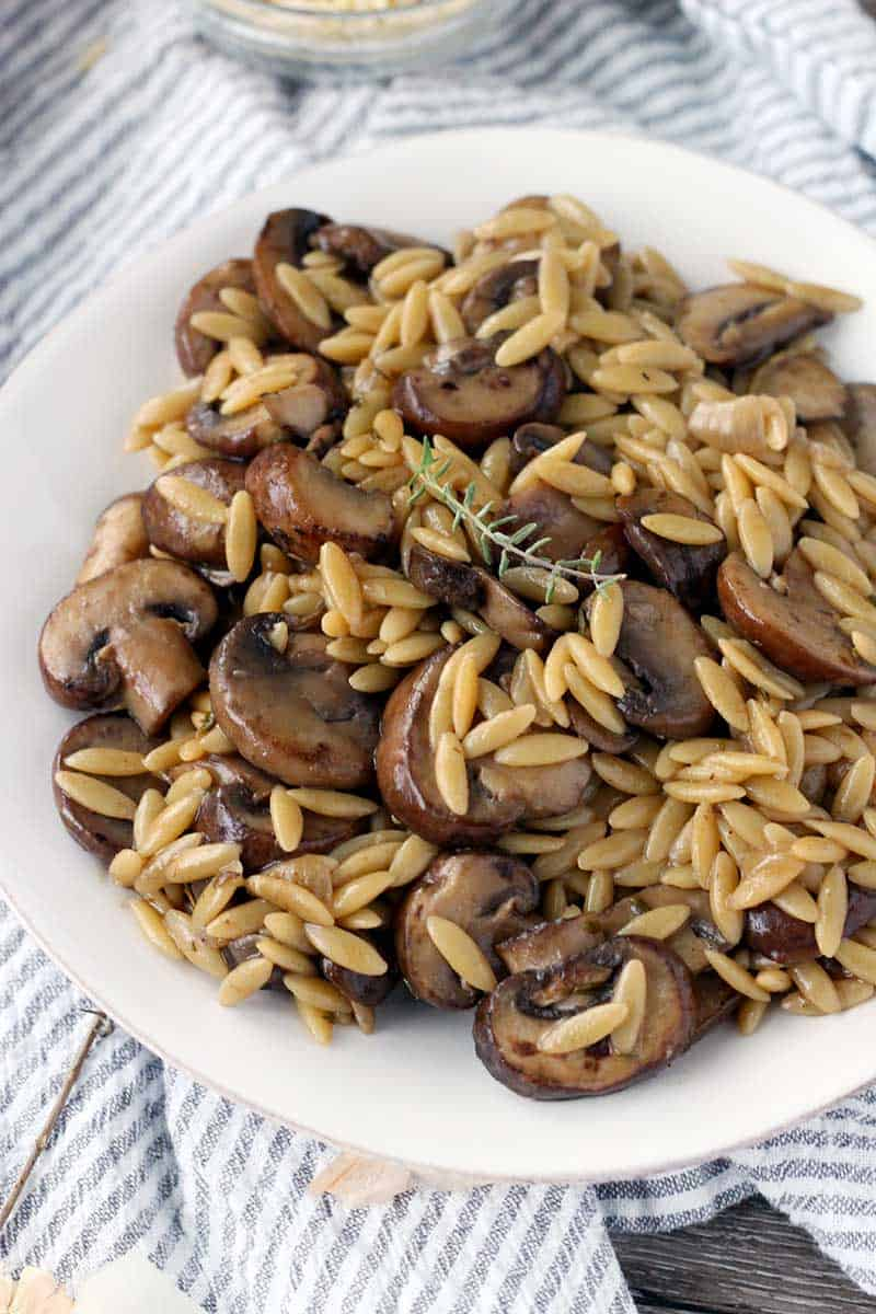 Close up of orzo and mushrooms on a white plate with a sprig of thyme on top