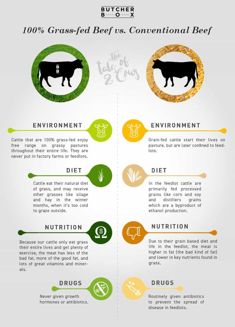 differences between grass-fed beef and conventional beef
