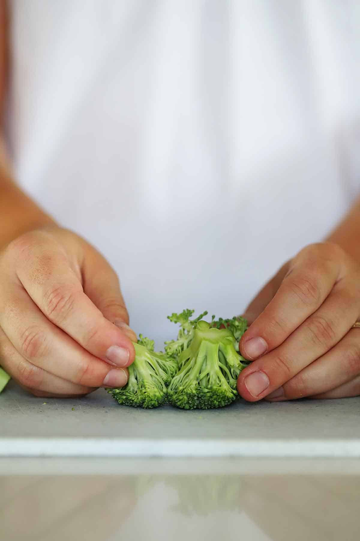 Separating a small broccoli floret into two pieces.