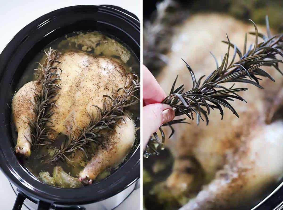 Taking a rosemary sprig out of a slow cooker.
