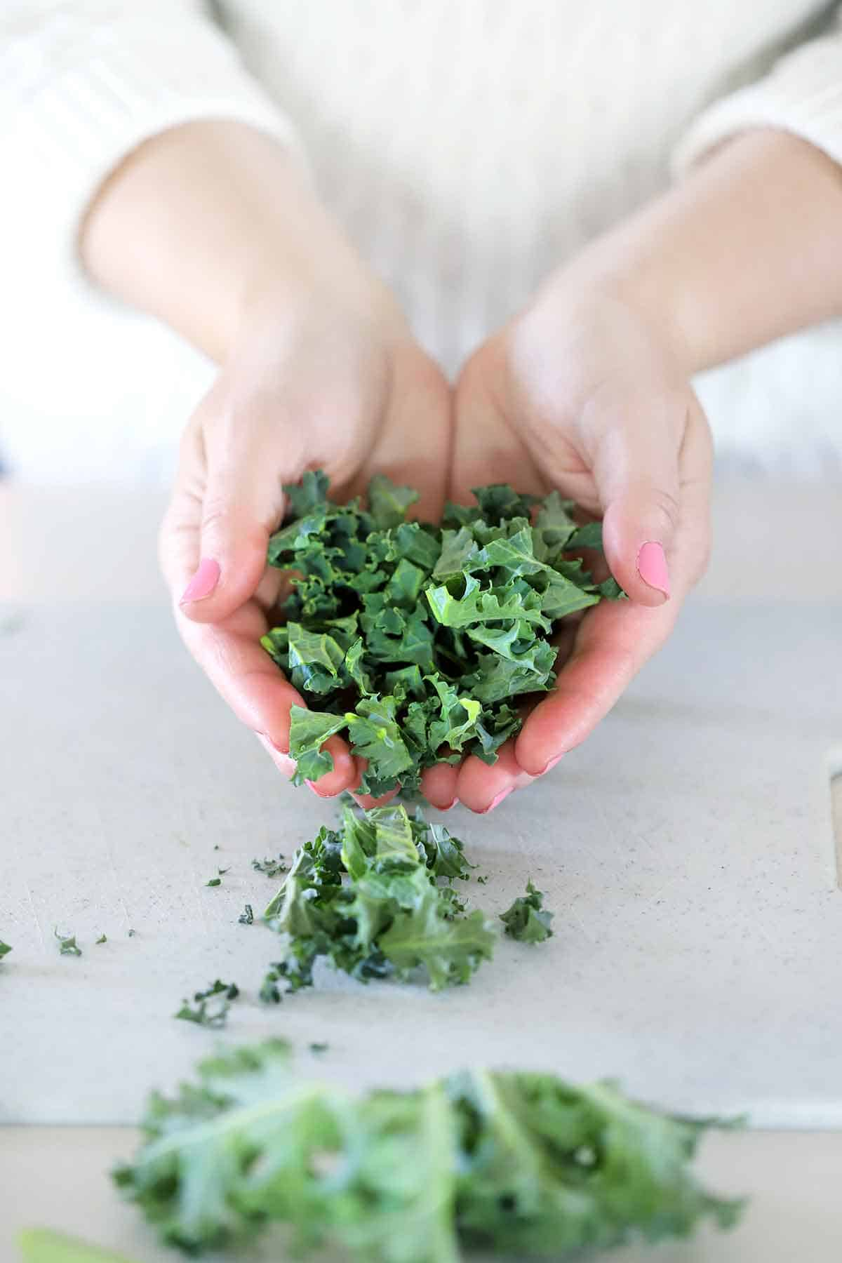 Hands holding chopped kale.