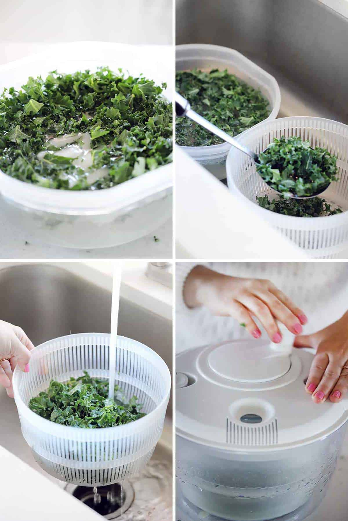Showing how to soak kale in ice water and wash it before spinning it in a salad spinner.