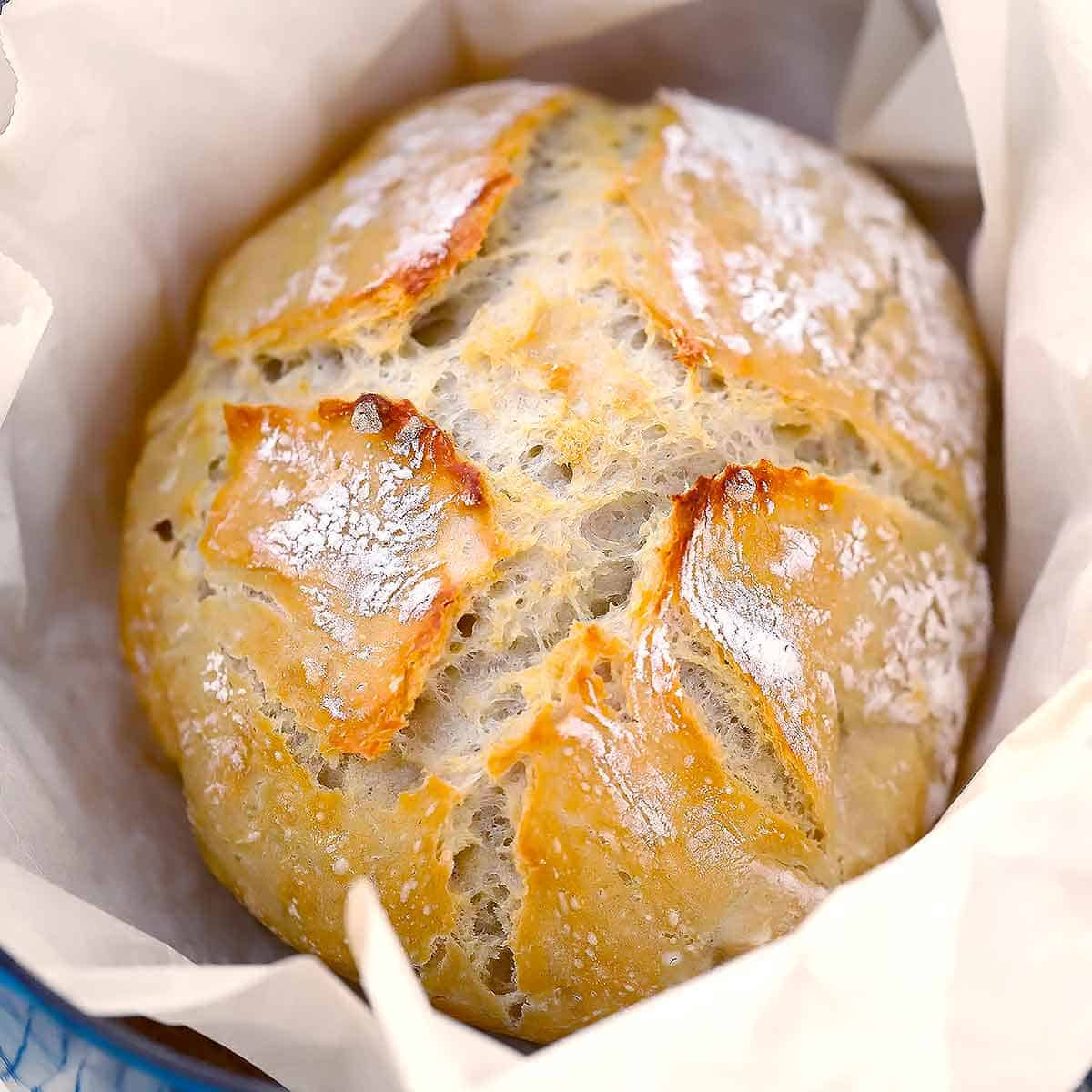 Dutch Oven No Knead Bread (with perfect crusty crust ...