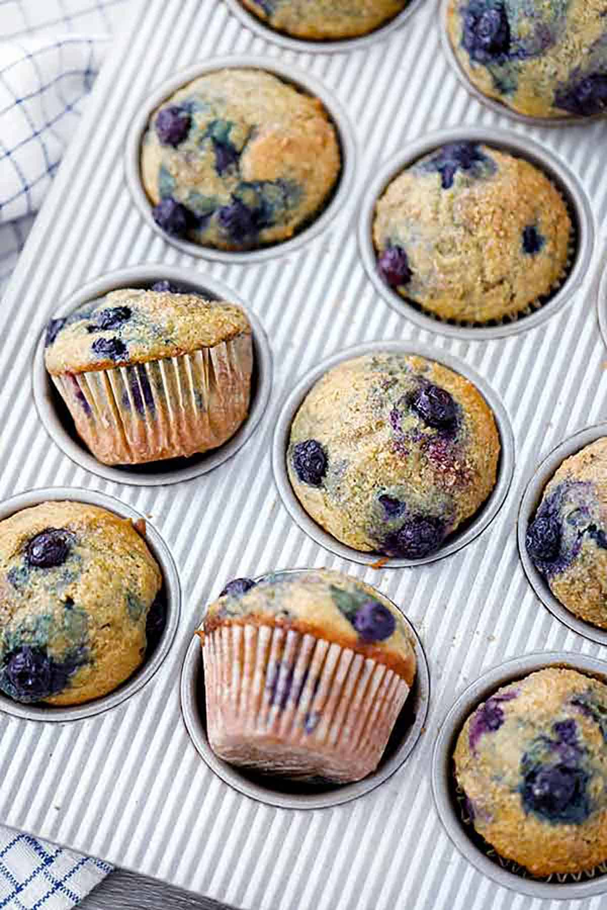 Close up photo of healthy blueberry muffins in a muffin pan.